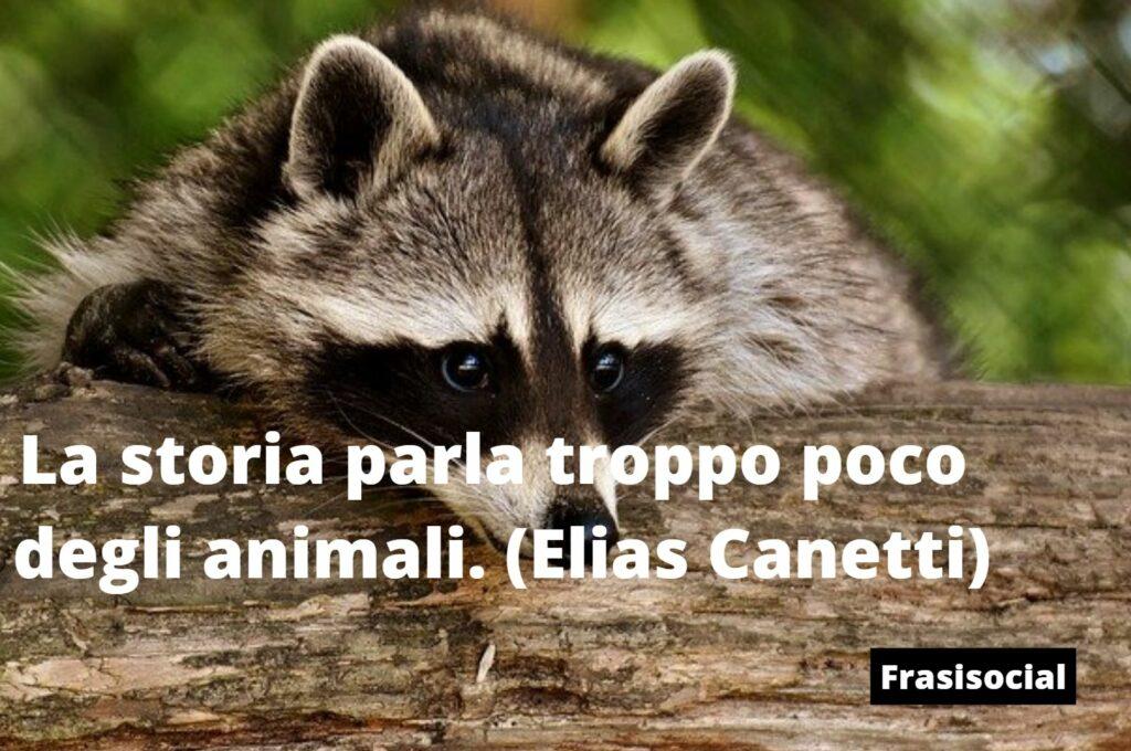Frasi sugli animali di Canetti